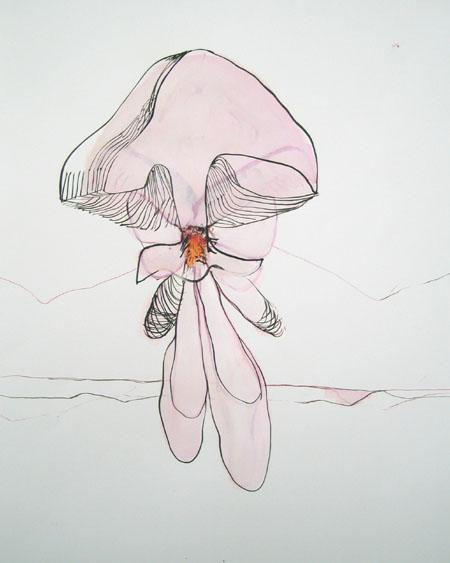 pinkpilz.jpg