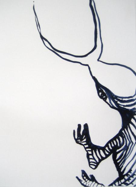 zebra-bug.jpg